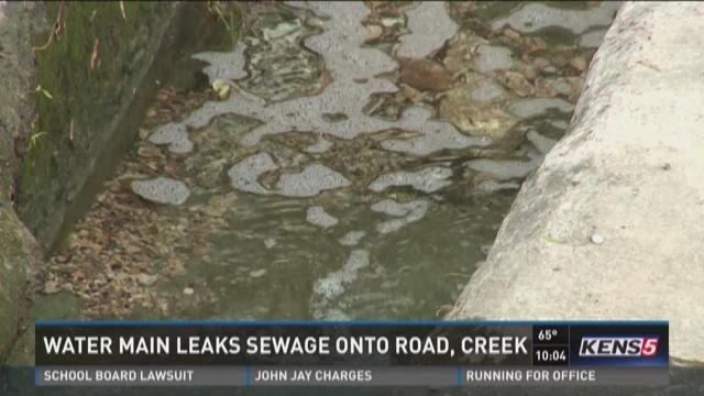 Weekend rain forces raw sewage onto road